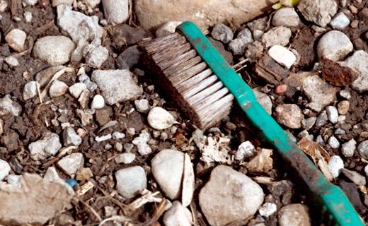 dca-blog_keep-toothbrush-clean